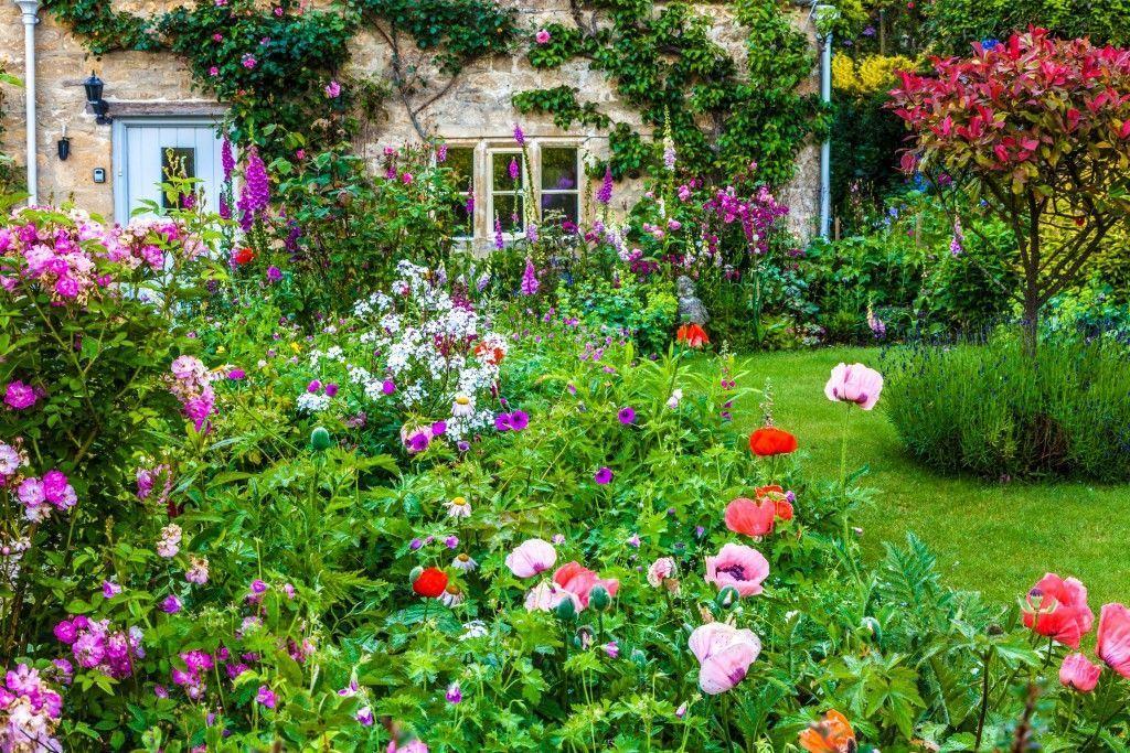 Lovely Floral Cottage Garden