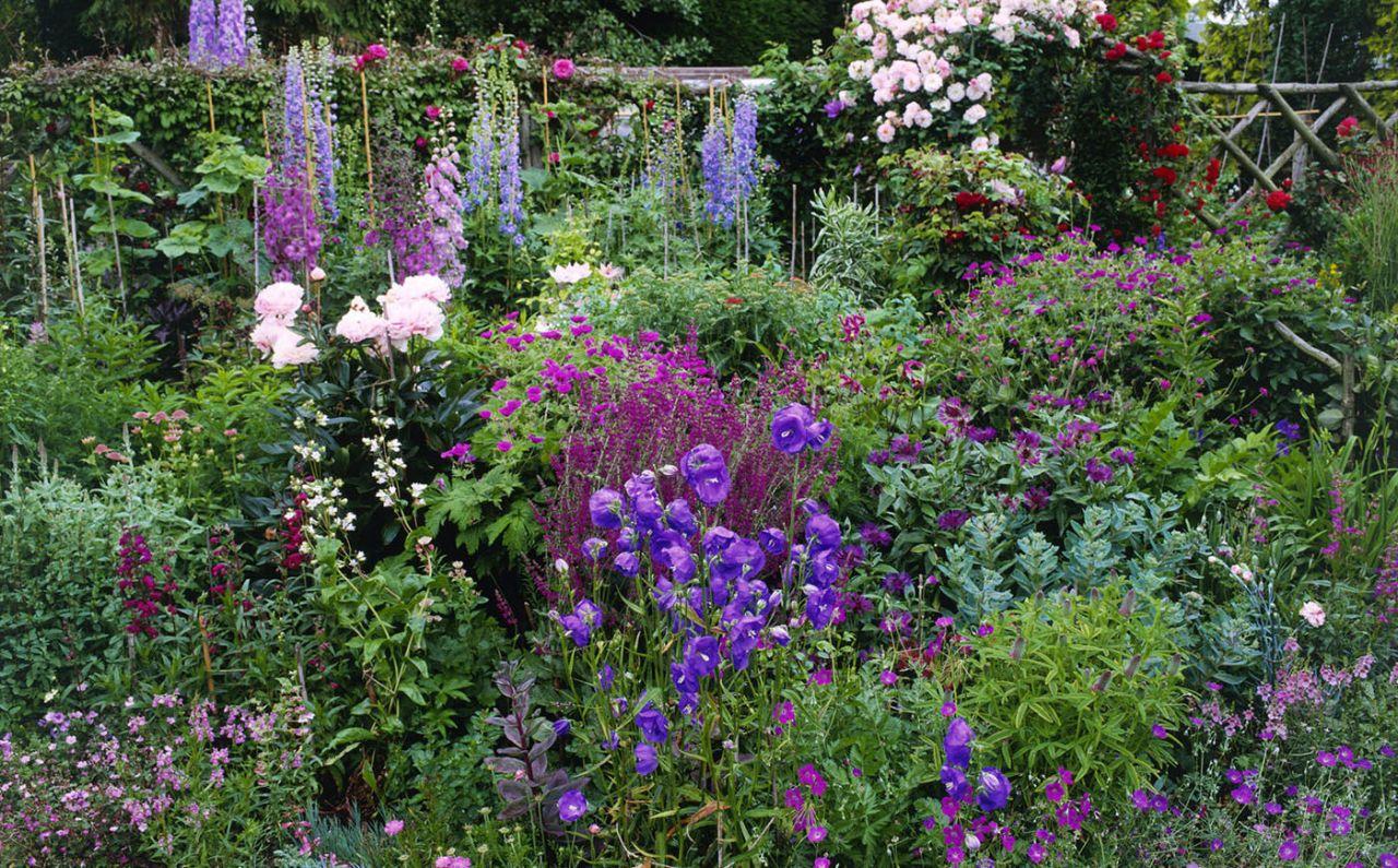 Cottage Garden Flower Border