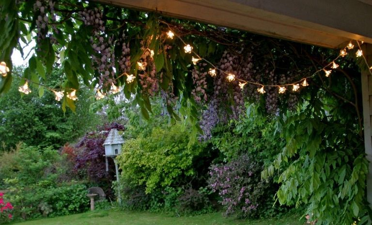 5 cheap garden ideas best gardening ideas on a budget garden ideas on a budget outdoor fairy lights workwithnaturefo