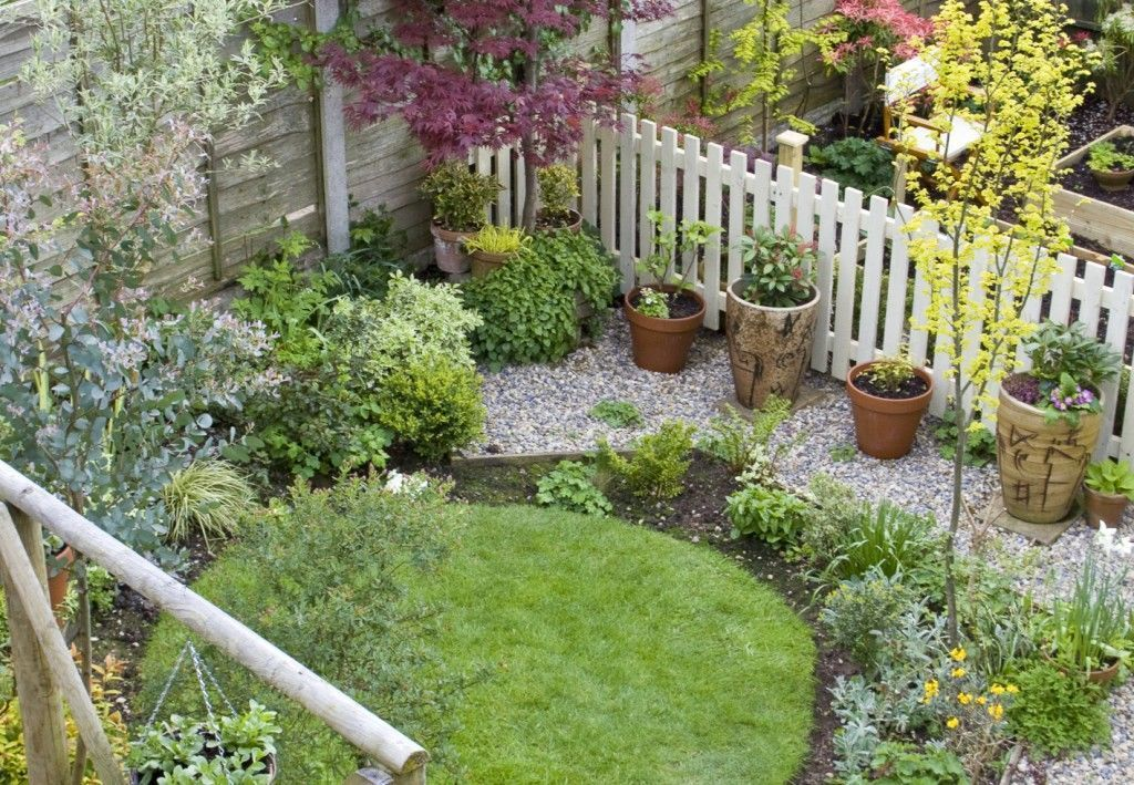 Garden Ideas On A Budget Lawn