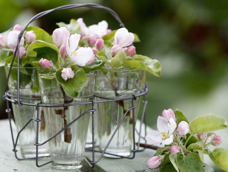 7 stunning spring flower arrangements spring flower apple blossom mightylinksfo