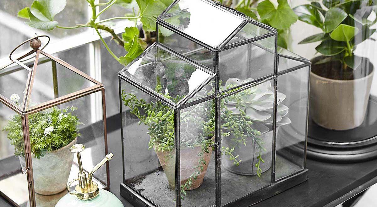 6 Beautiful Ways To Display Indoor Plants