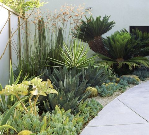 . 10 tips for a stylish contemporary garden design