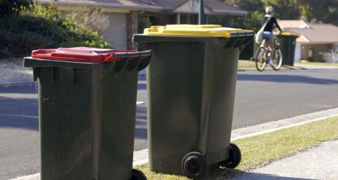 Wheelie Bin Cleaning >> 7 Bin Cleaning Tips To Keep Bugs And Smells At Bay