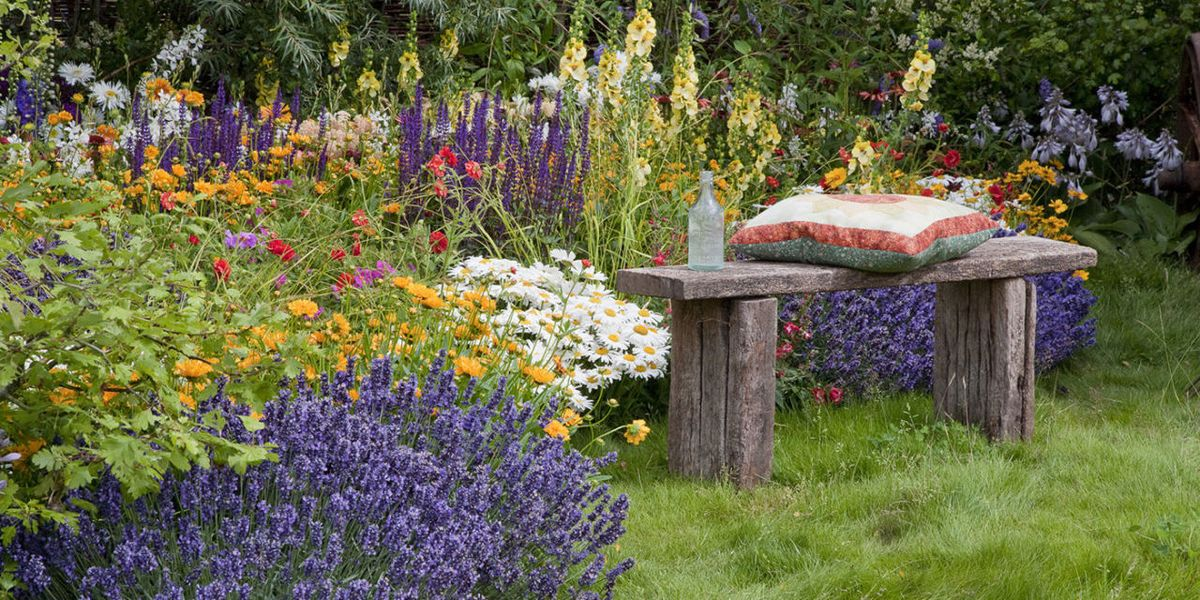 How To Have Year Round Colour In Your Garden