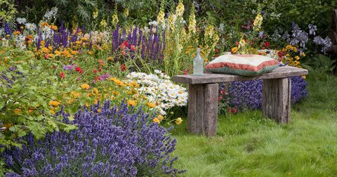 A Little Planning And You Ll Have Wonderful Colour In Your Garden To Enjoy All Year