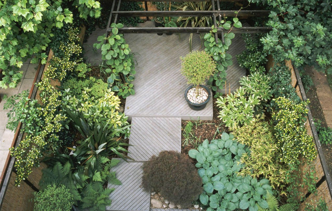 Small Garden Overhead View