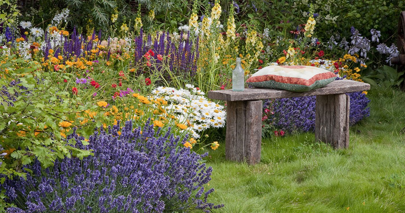 How To Have Year Round Colour In Your Garden Garden Planting Ideas