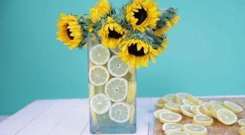 Lemon vase and sunflowers