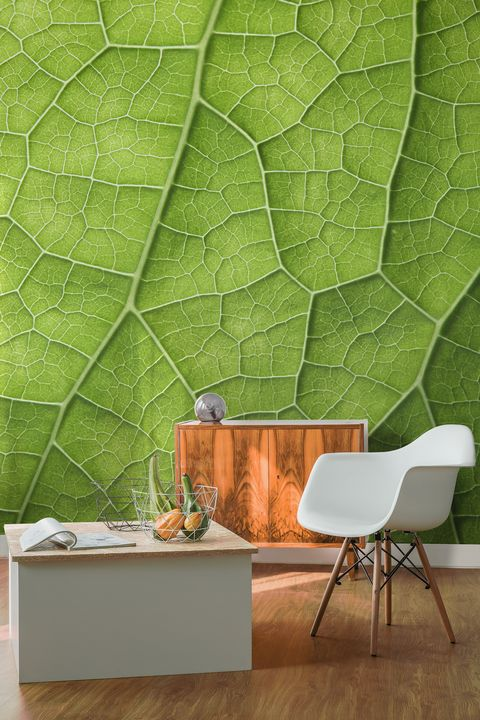 Leaf design wallpaper mural from Murals Wallpaper