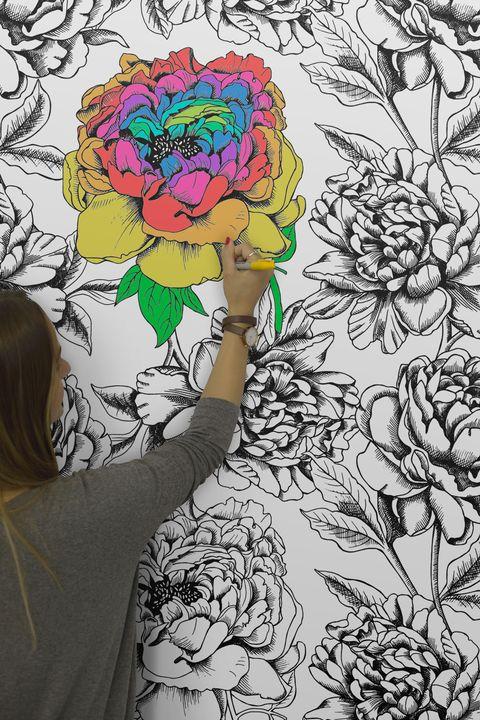 Colour in wallpaper from Murals Wallpaper