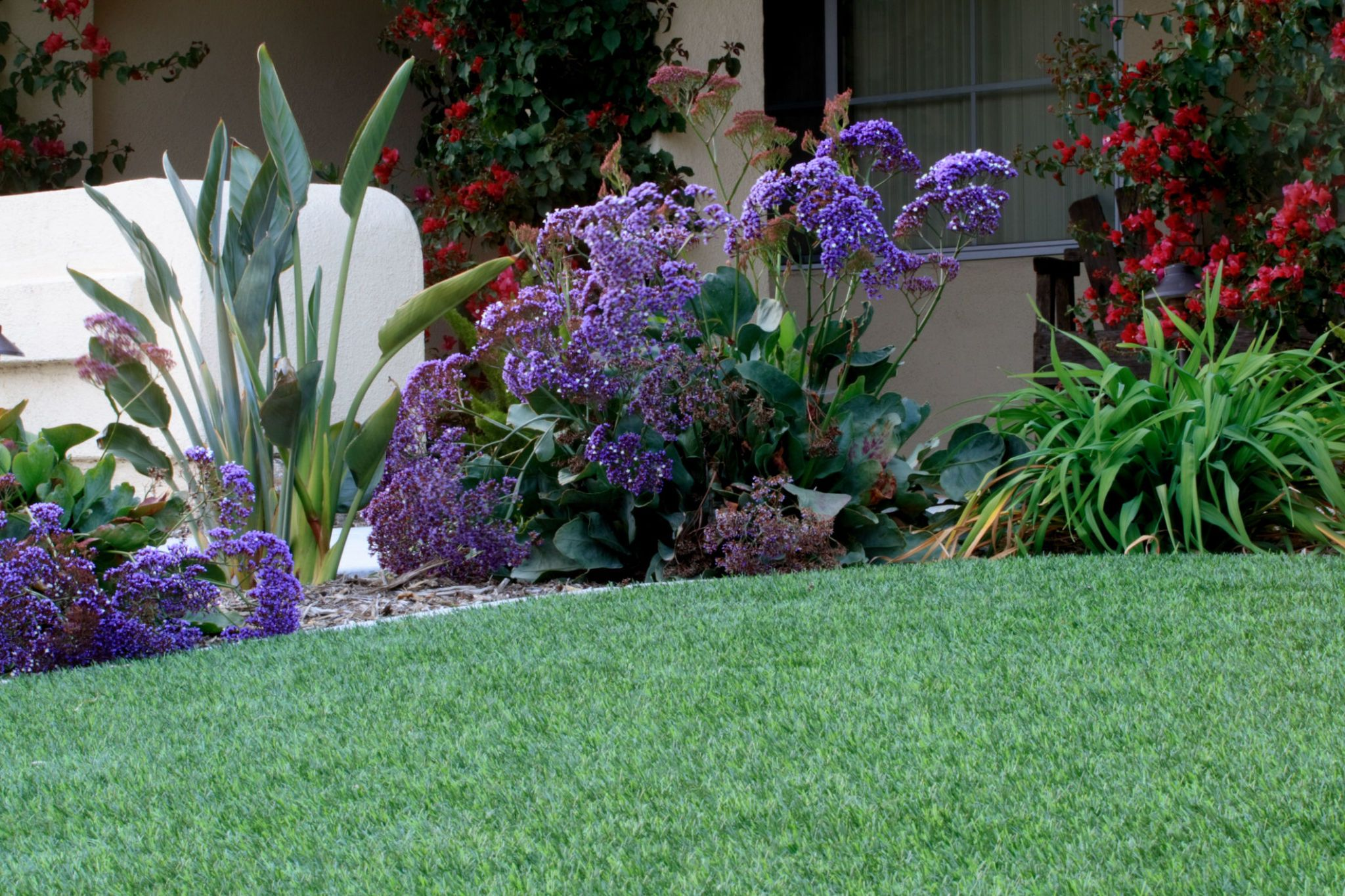 Artificial Lawn With Waterwise Landscaping