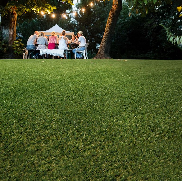 Artificial Grass 7 Reasons Why You Should Fake It