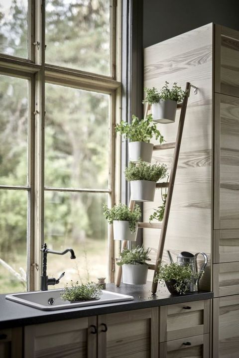 Herb garden plant stand from Ikea