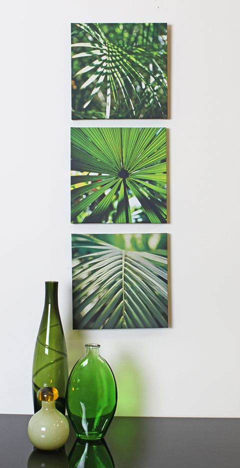 Bring a touch of the jungle to your home! These luscious leaves are designed with sharp striking geometric lines and fresh zesty greens.