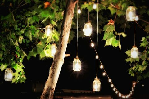 Illuminated Decorations Hanging From A Tree In A Garden At Night