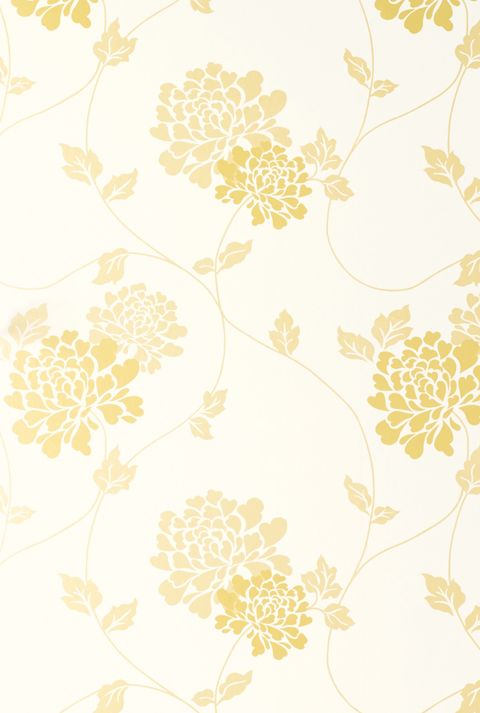Isadore Camomile Yellow White Floral Wallpaper £44