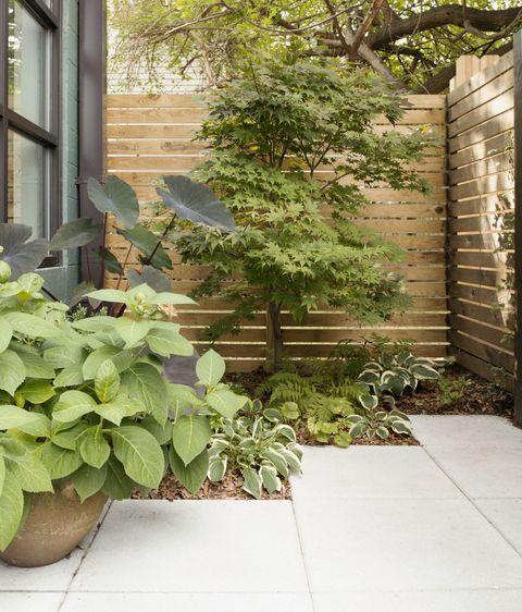 Aménagement paysager et terrasse d'un immeuble à condos moderne