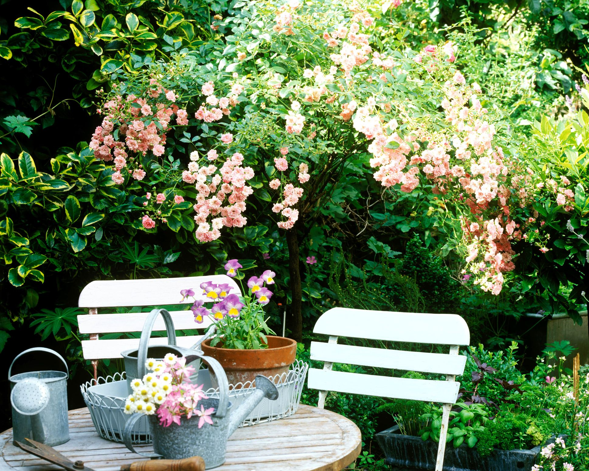 small garden design ideas 7 golden rules for your outdoor space rh housebeautiful com