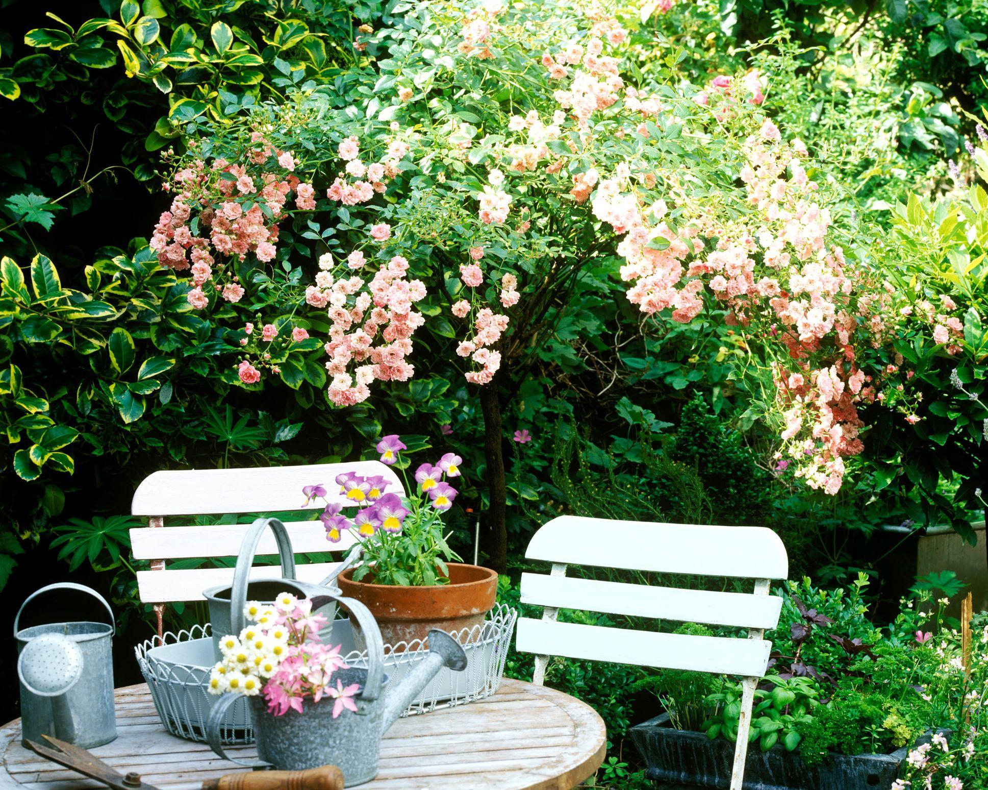 Small Garden Ideas Small Garden Design Golden Rules To Follow