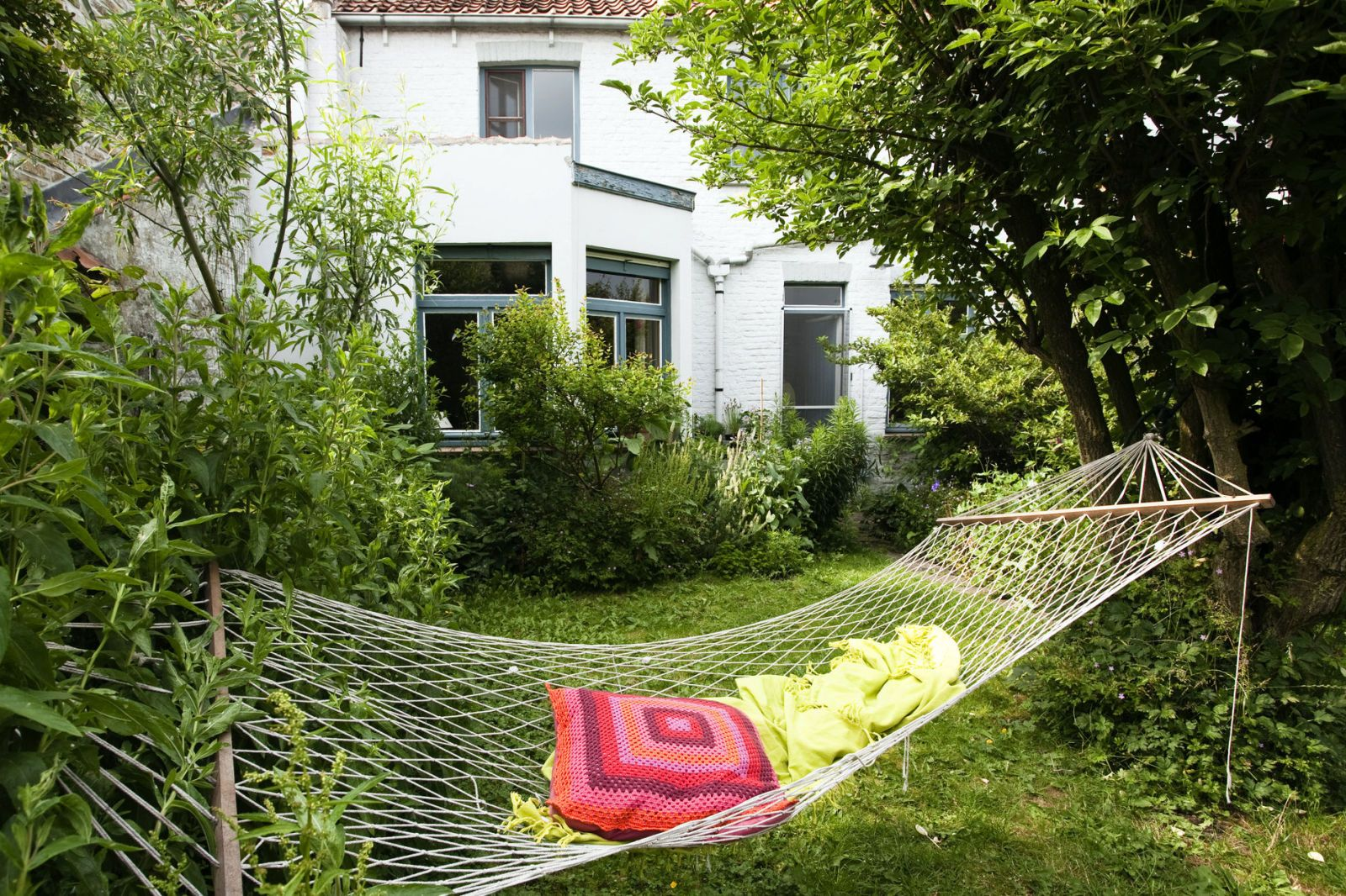 Small Suburban Garden With Hammock And Informal Planting, June