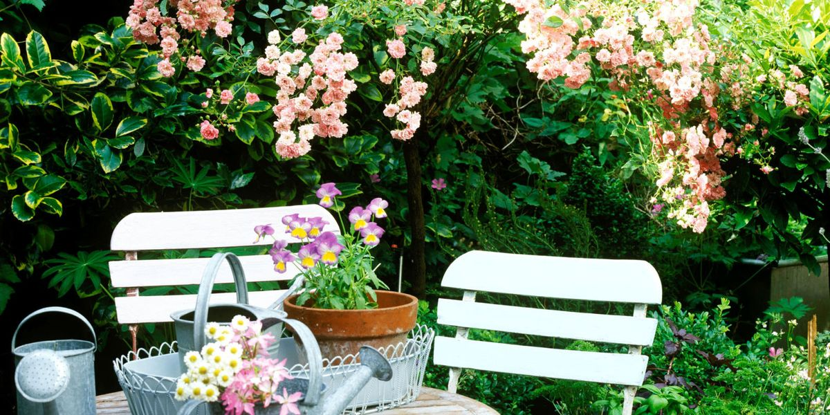 Small gardens: 7 golden rules to give your space the wow ...