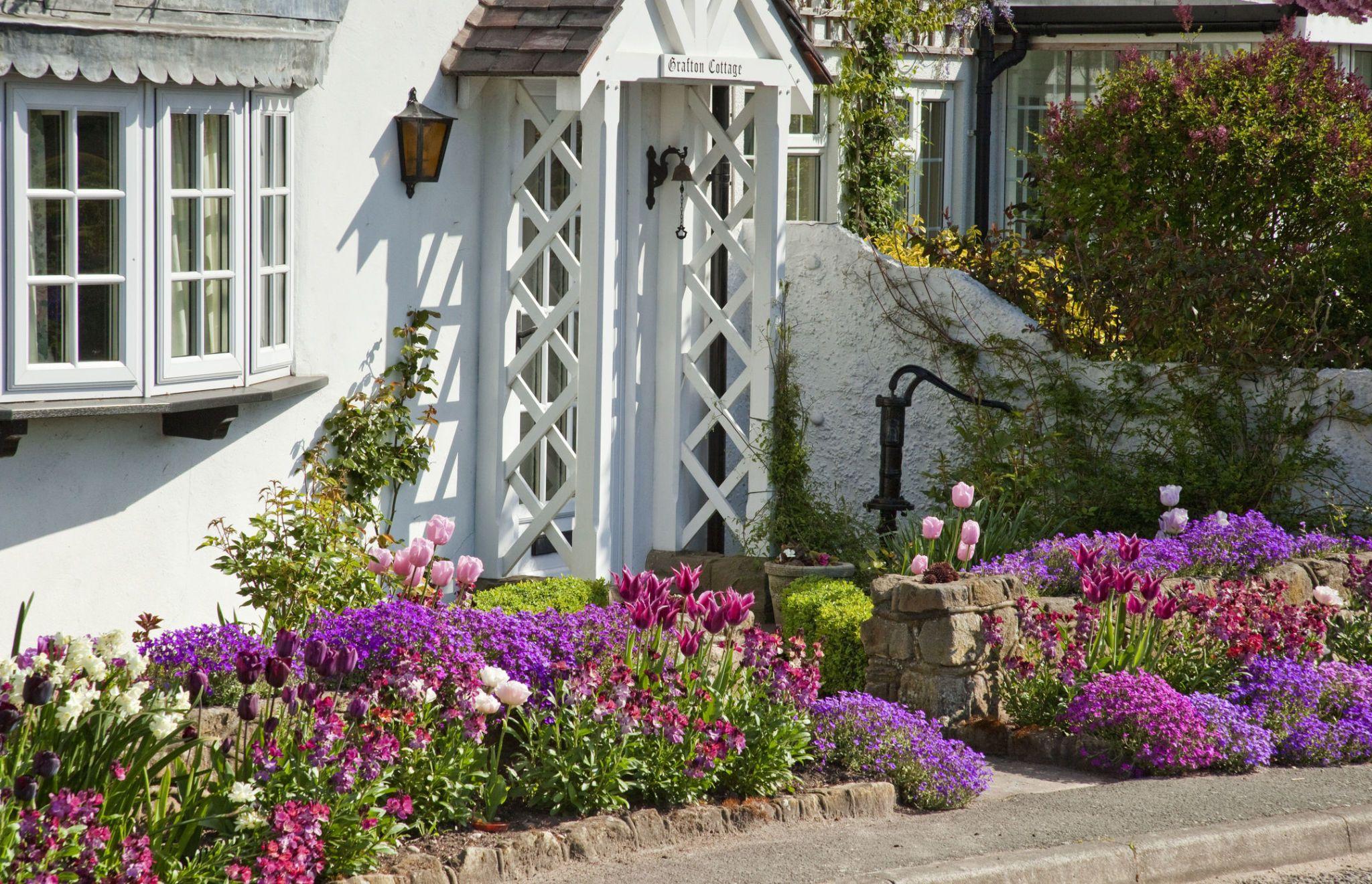 Attractive Spring Flowering Cottage Front Garden, Staffordshire, UK
