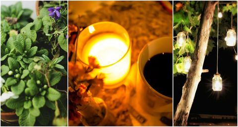 How to hygge your garden - potted plants, candle with cup of coffee, and lanterns hung from a tree in a garden