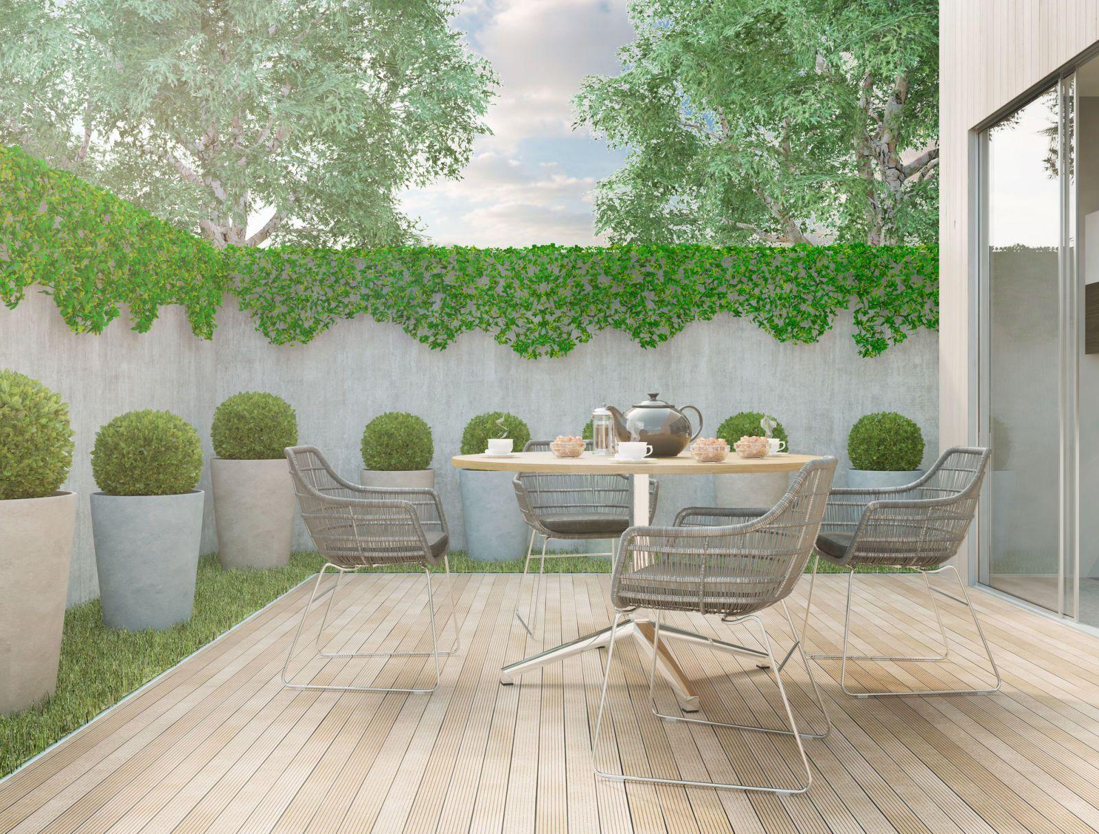 Modern Minimalistic Style Backyard Garden On A Sunny Day
