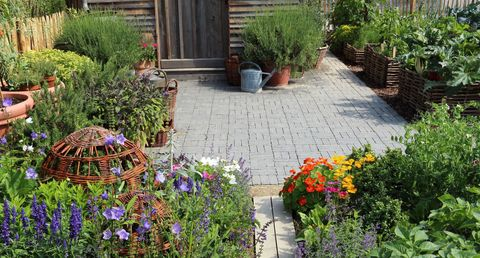 Low maintenance gardens how to get the wow factor all for Low maintenance flower garden ideas
