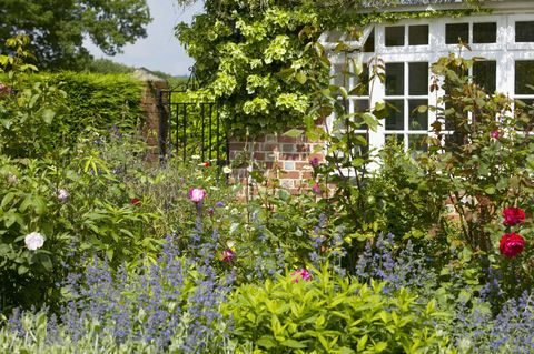 How to give your cottage garden the wow factor all year round border infront of house with view to gate the lowes garden the coach house mightylinksfo