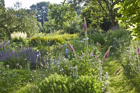 How to give your cottage garden the wow factor all year round