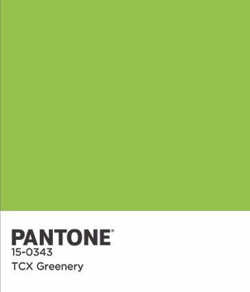 Greenery Named As Pantone S Colour Of The Year 2017