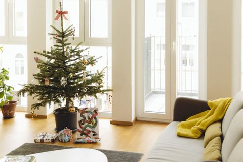modern loft living room with potted blue spruce christmas tree - How To Keep Christmas Tree From Drying Out
