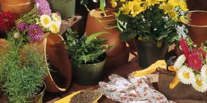 Flower pots and gardening tools