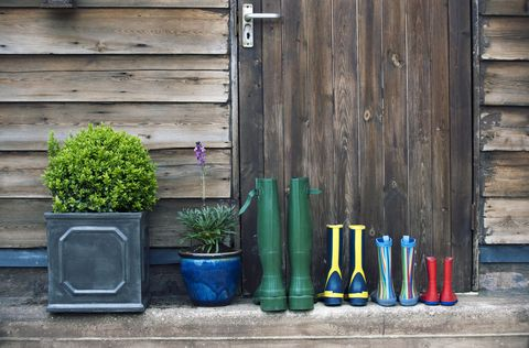 wellington boots neatly lined up in front of garden shed