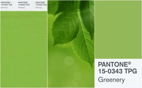 Pantone's Greenery collage