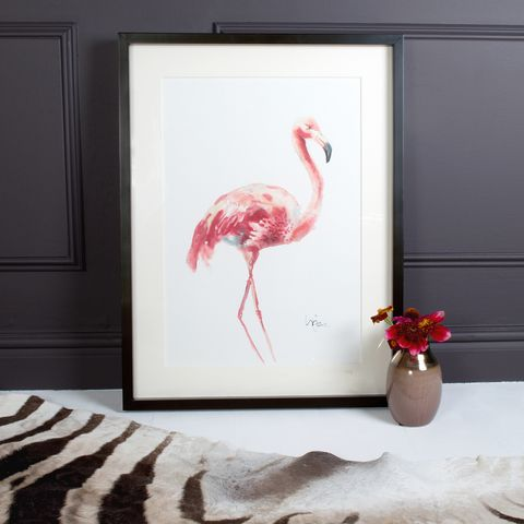 Image This Delicate Pink Flamingo