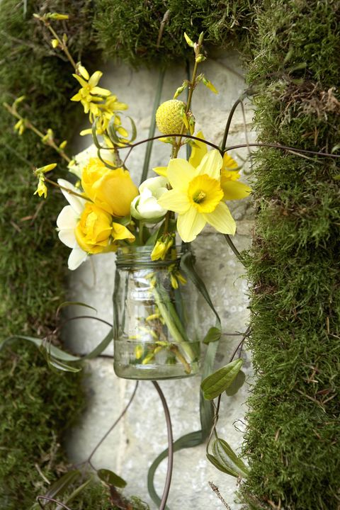 Spring flowers flower arranging