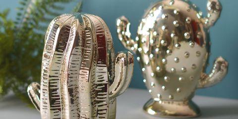 Mia Fleur Gold Cacti set