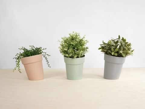Quirky vases and planters: IN-SPACES, Distorted Flowerpots