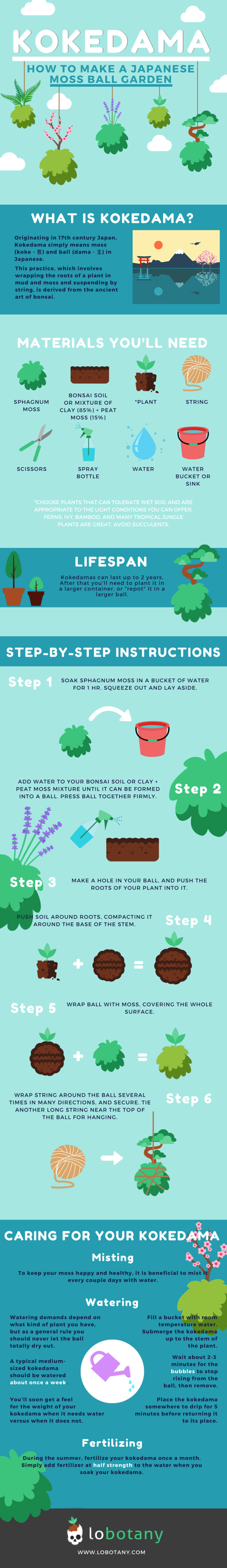 How to make a kokedama - a Japanese moss ball - infographic