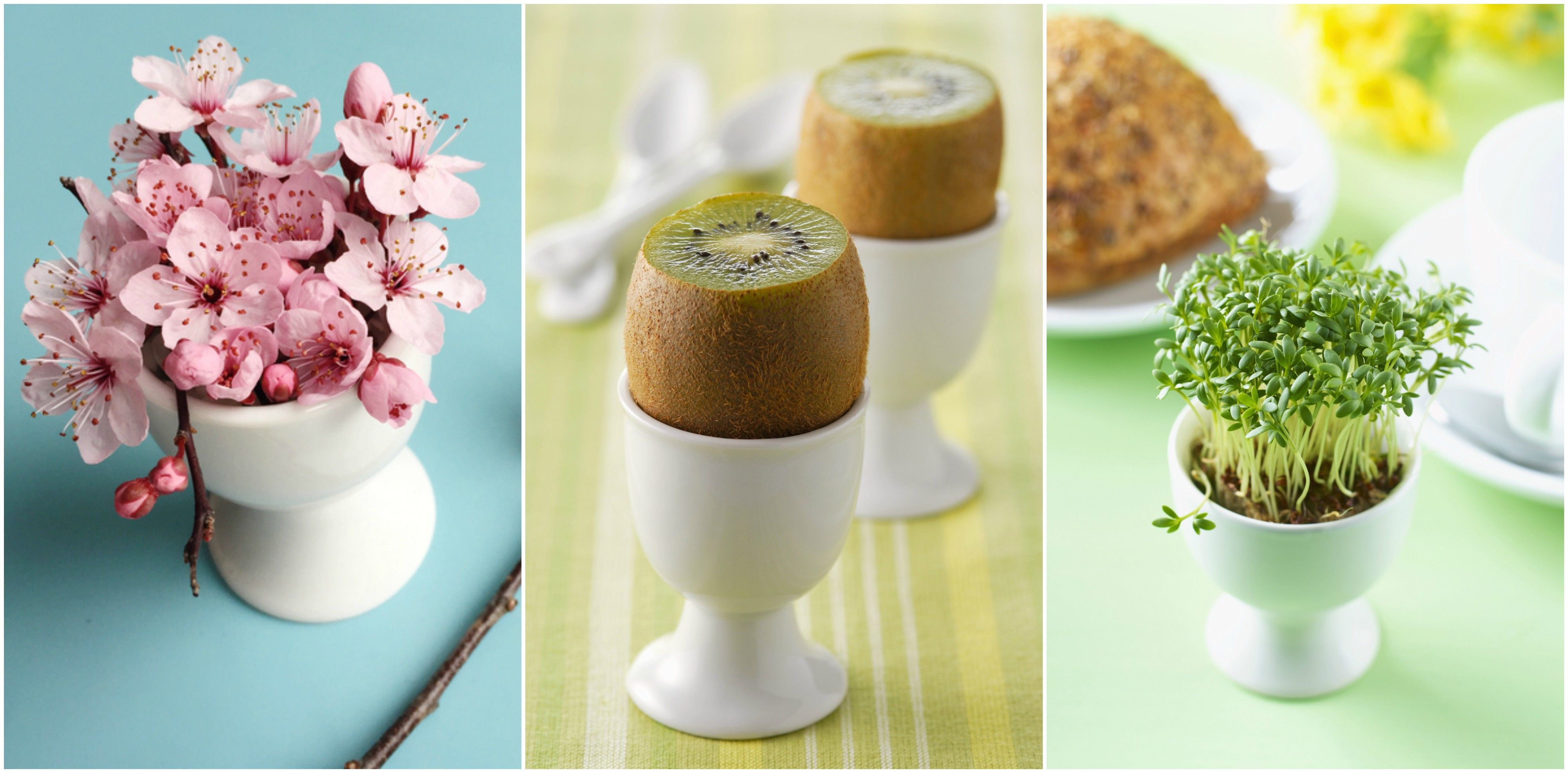 10 amazing alternative uses for egg cups