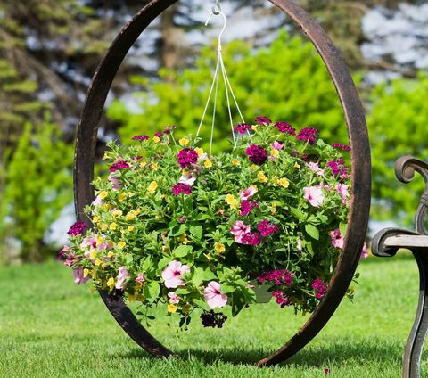 Flower Basket Hanging on Wagon Wheel by Garden Bench