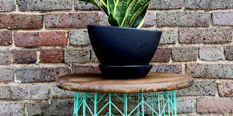 Flowerpot, Wall, Table, Iron, Furniture, Shelf, Plant, Houseplant, Brick, Flower,