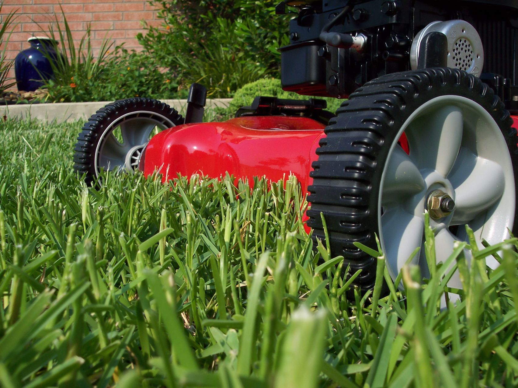 You haven't mowed the lawn yet? Don't panic, but you should read this...