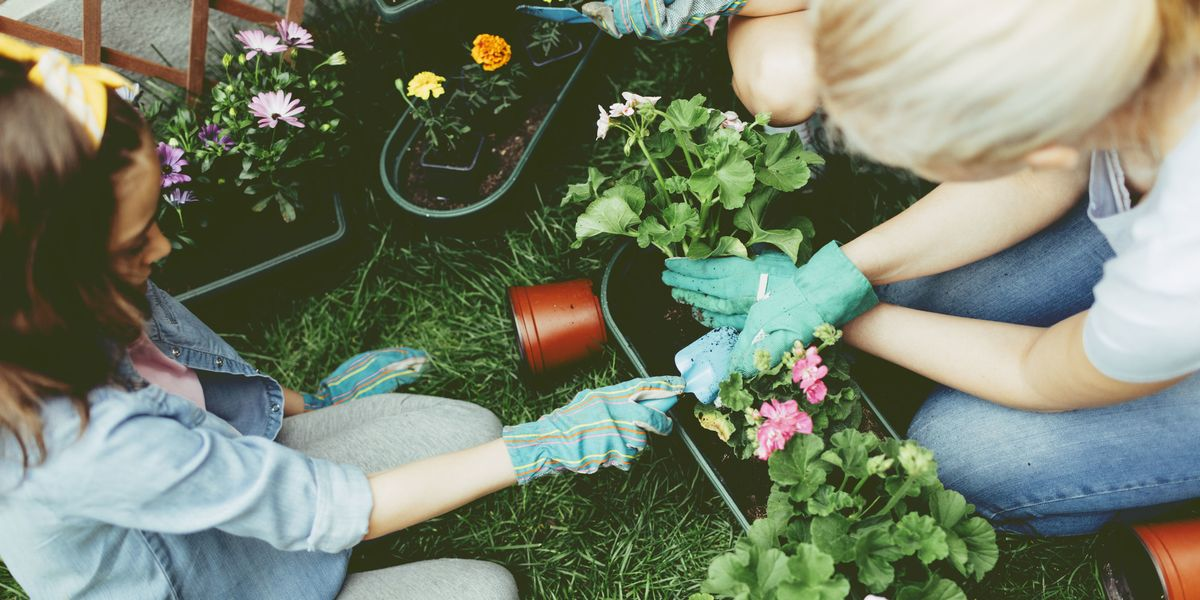 3 reasons why gardening is the therapy for you