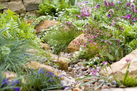 'The Art of Yorkshire garden', RHS Chelsea flower show 2011. Designed by Gillespies. Silver medal