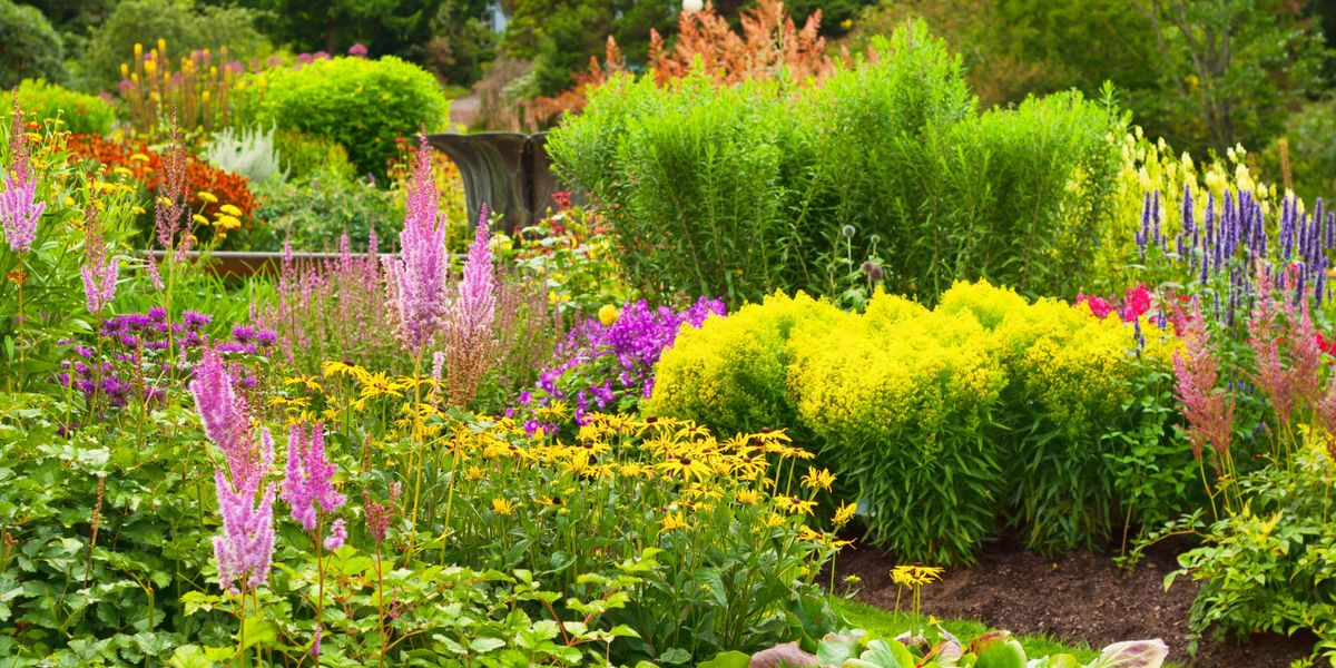 4 key trends changing our gardening habits - popular ...