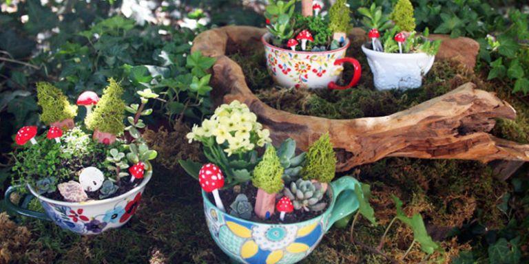 Trend alert: Tiny teacup fairy gardens